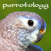 parrotology