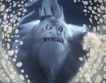 Warlock's Icy Heart