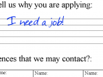 'Why You Are Applying' by